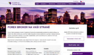 Forexový broker Purple Trading: Portfolio management