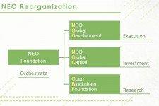 Reorganizace NEO