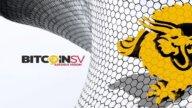 Jakou sílu mají fake news? Vyhnaly hodnotu Bitcoin SV o 90 %!