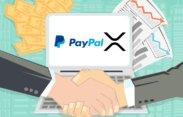 Blockchainové transakce jsou oproti PayPalu 30x levnější!