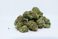 konopné šišky marihuana akcie