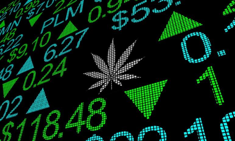 Zajímavé marihuanové akcie pro investování v druhé polovině 2020