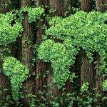 <strong>Přečtěte si také:</strong> Zelené akcie jsou investiční příležitostí budoucnosti – Investujte zodpovědně