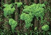 Zelené akcie jsou investiční příležitostí budoucnosti – Investujte zodpovědně