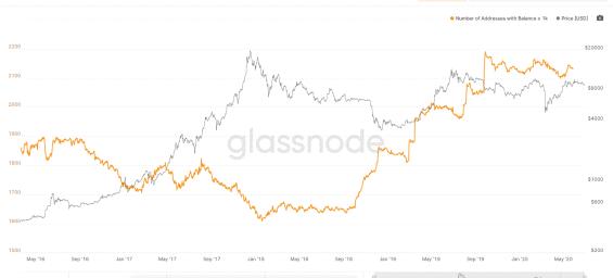 Graf: počet adres s více než 1000 bitcoiny a cena BTC