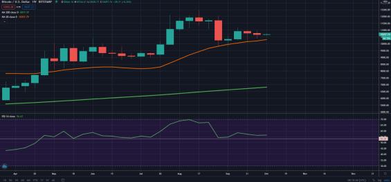 Vývoj ceny bitcoinu na týdenním grafu