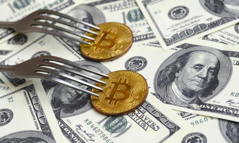 Hard fork vs. soft fork u kryptoměn - Co to je a v čem se liší?