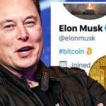 <strong>Přečtěte si také:</strong> Tesla pod vedením Elona Muska nakoupila Bitcoin v hodnotě 1,5 miliardy dolarů. Cena BTC následně překonala hranici 44 000 dolarů