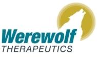 Werewolf Therapeutics Logo