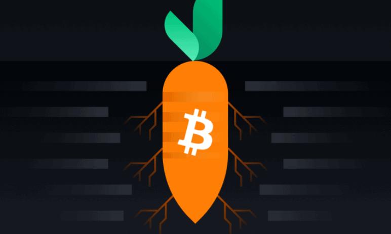 Co je to Bitcoin Taproot a jak tento softfork ovlivní fungování Bitcoinu?