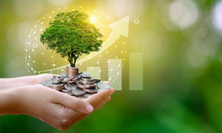 Těchto 5 akcií vám může pomoci dosáhnout finanční svobody