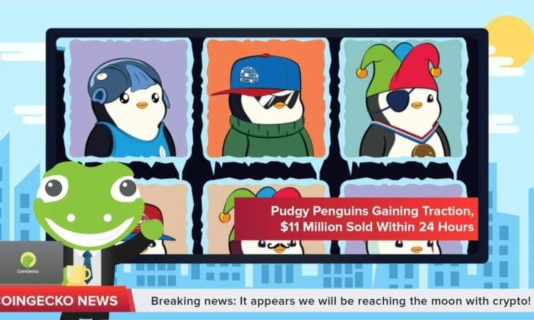 Svět sběratelských tokenů NFT žije kreslenými tučňáky Pudgy Penguins. Co jsou zač?
